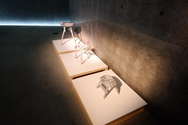 スタジオ スワイン 「カン・シティ」2012年