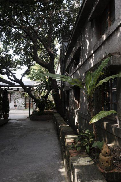 秋とはいえ日差しが強い臺北。至る所にガジュマルなどの南洋樹が植栽され、木陰を作っています。