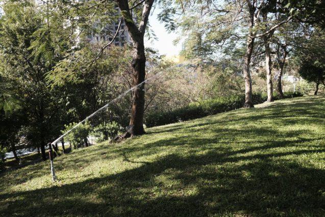 RIBBONs / 台中市円形野外劇場がある文心森林公園のランドスケープ。