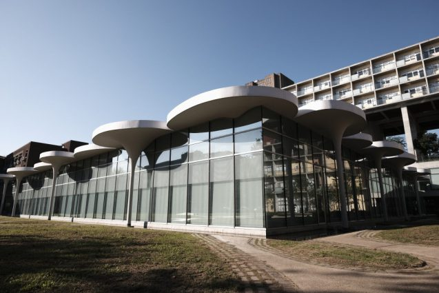 国立台湾大学社会学部棟+辜振甫記念図書館を敷地右側から。植物のアルゴリズムはフラクタルな形状ではなく不規則で動的なデザイン。
